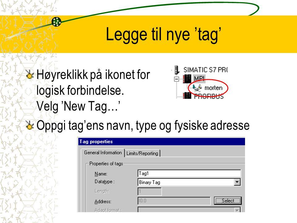 Legge til nye 'tag' Høyreklikk på ikonet for logisk forbindelse. Velg 'New Tag…' Oppgi tag'ens navn, type og fysiske adresse