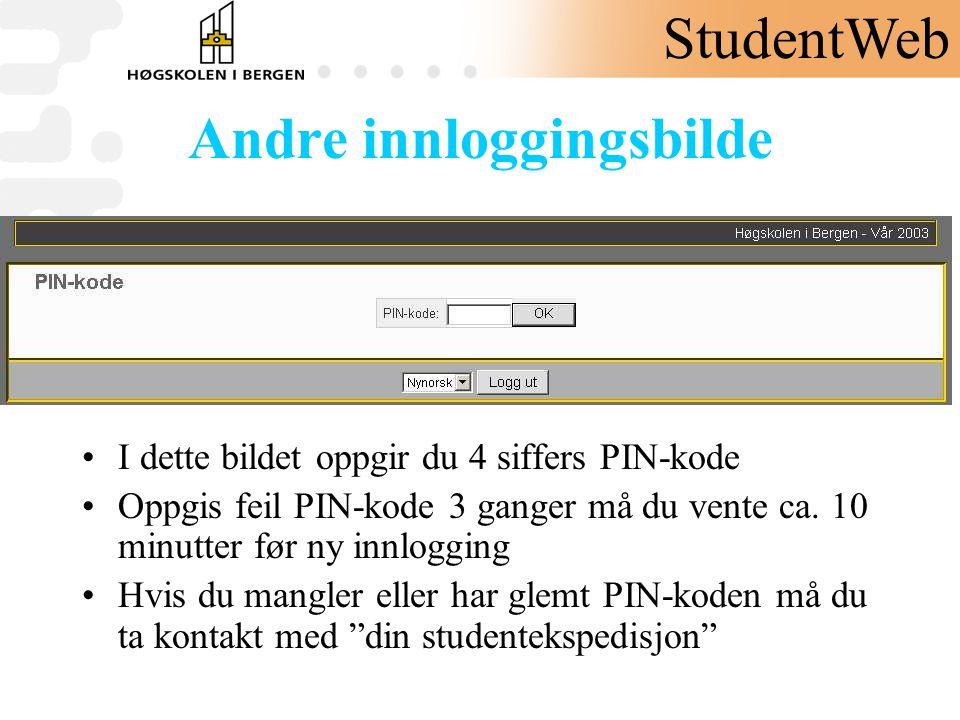 Andre innloggingsbilde •I dette bildet oppgir du 4 siffers PIN-kode •Oppgis feil PIN-kode 3 ganger må du vente ca. 10 minutter før ny innlogging •Hvis