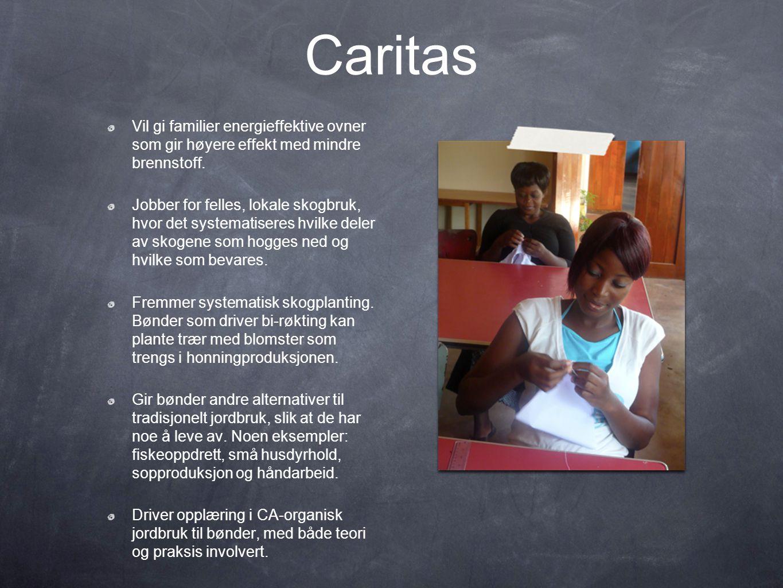 Caritas Vil gi familier energieffektive ovner som gir høyere effekt med mindre brennstoff.
