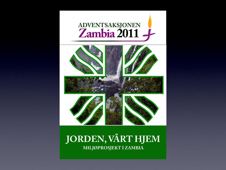 Det er et stort problem at utenlandske selskaper som har etablert seg i Zambia holder en mye lavere standard på sitt arbeid enn hva de gjør i hjemlandet.