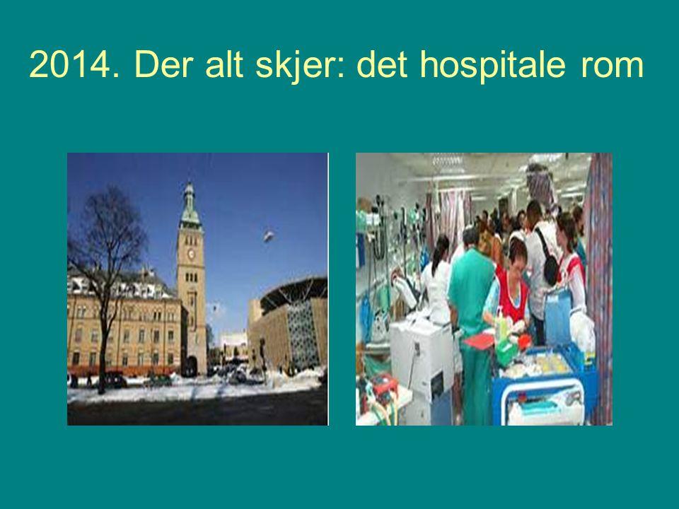 2014. Der alt skjer: det hospitale rom
