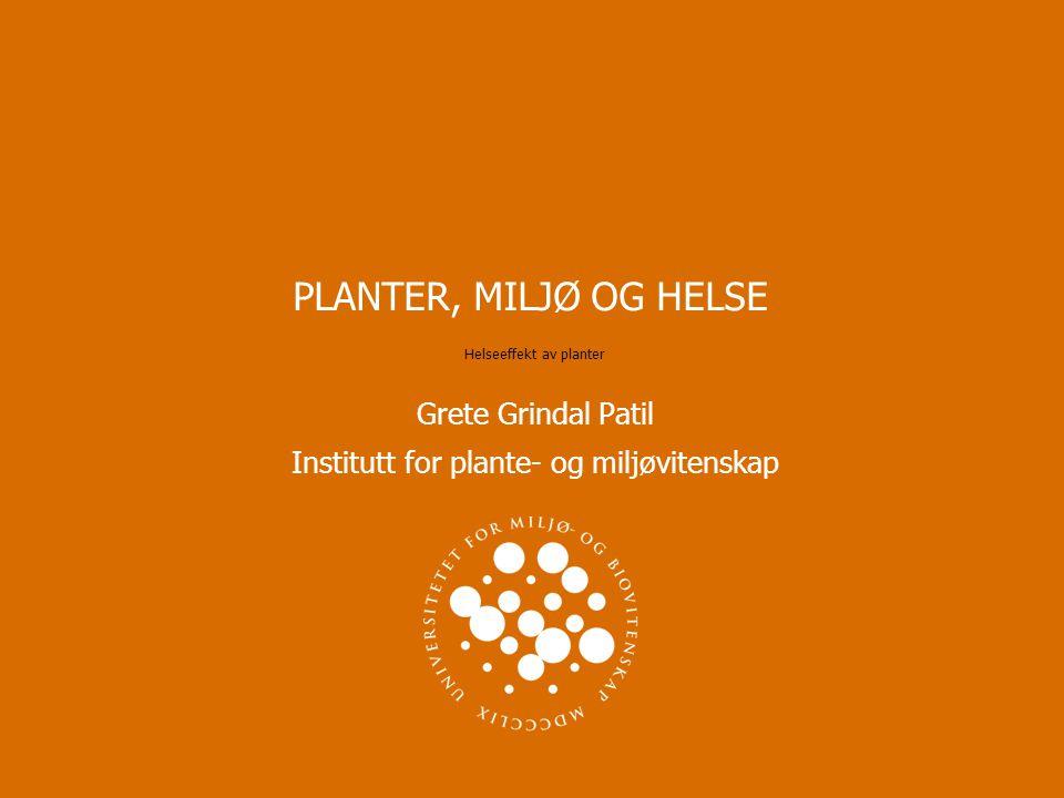 PLANTER, MILJØ OG HELSE Helseeffekt av planter Grete Grindal Patil Institutt for plante- og miljøvitenskap