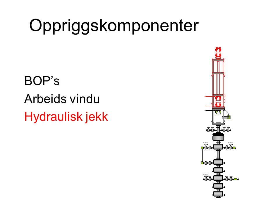 Oppriggskomponenter BOP's Arbeids vindu Hydraulisk jekk HYDR.