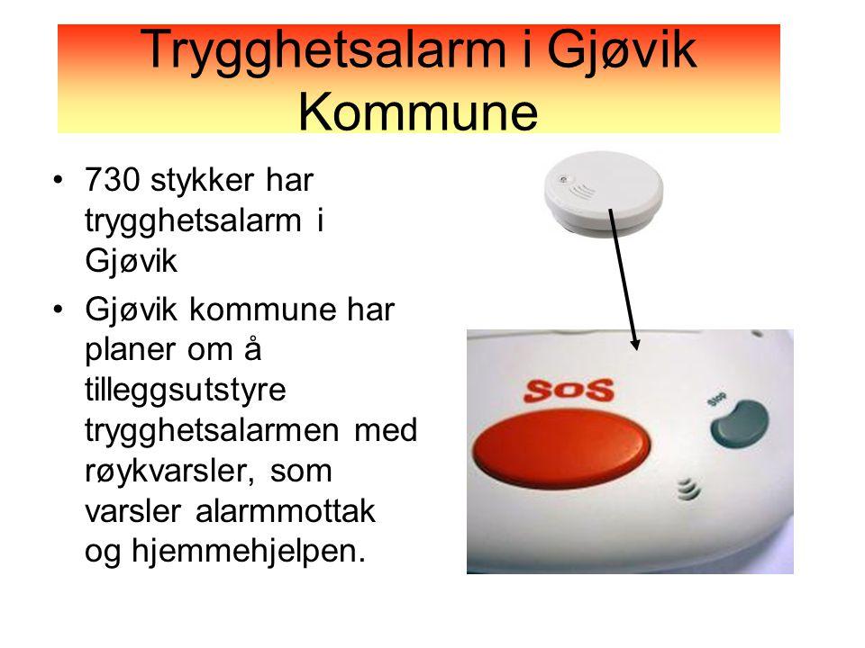 •730 stykker har trygghetsalarm i Gjøvik •Gjøvik kommune har planer om å tilleggsutstyre trygghetsalarmen med røykvarsler, som varsler alarmmottak og hjemmehjelpen.