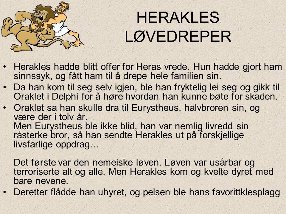 HERAKLES LØVEDREPER •Herakles hadde blitt offer for Heras vrede. Hun hadde gjort ham sinnssyk, og fått ham til å drepe hele familien sin. •Da han kom