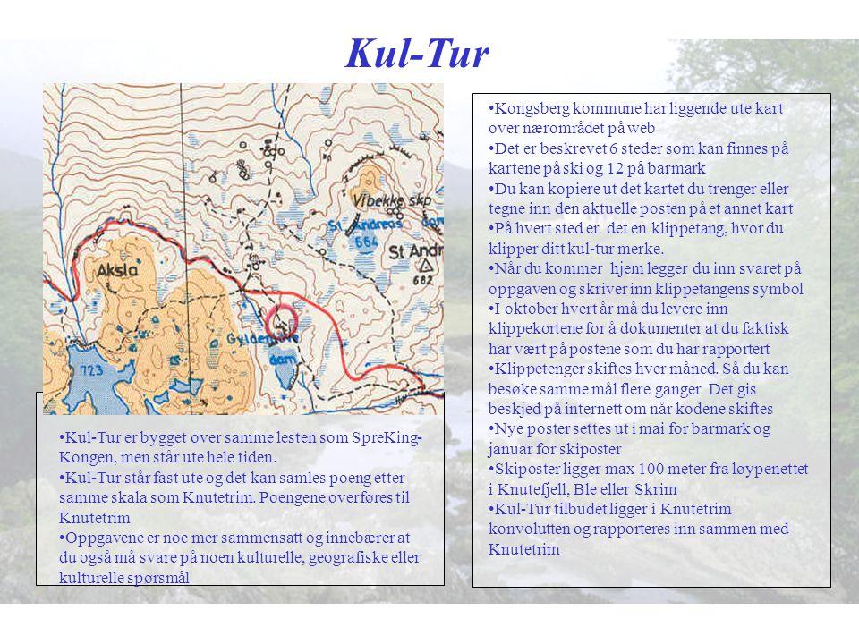 Kul-Tur •Kongsberg kommune har liggende ute kart over nærområdet på web •Det er beskrevet 6 steder som kan finnes på kartene på ski og 12 på barmark •