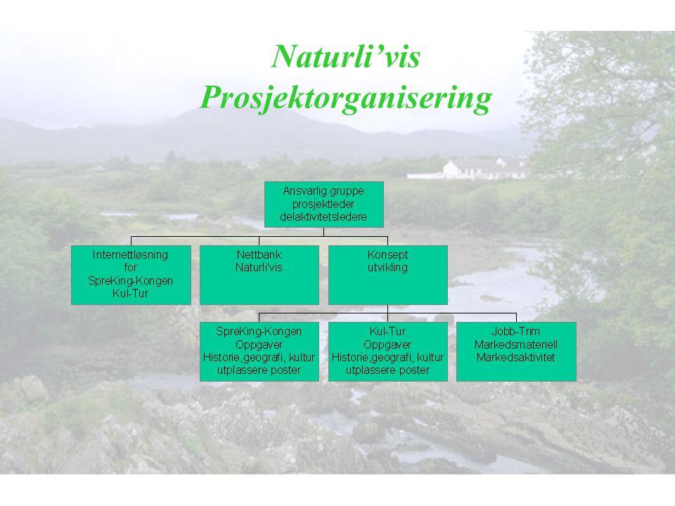 Naturli'vis Prosjektorganisering