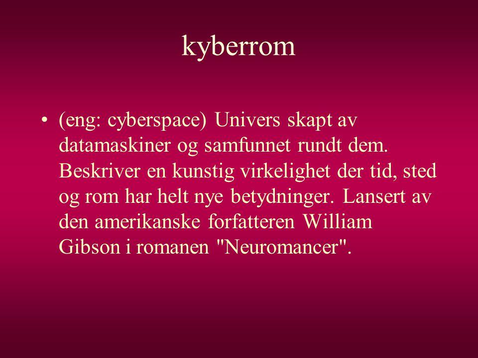 kyberrom •(eng: cyberspace) Univers skapt av datamaskiner og samfunnet rundt dem. Beskriver en kunstig virkelighet der tid, sted og rom har helt nye b