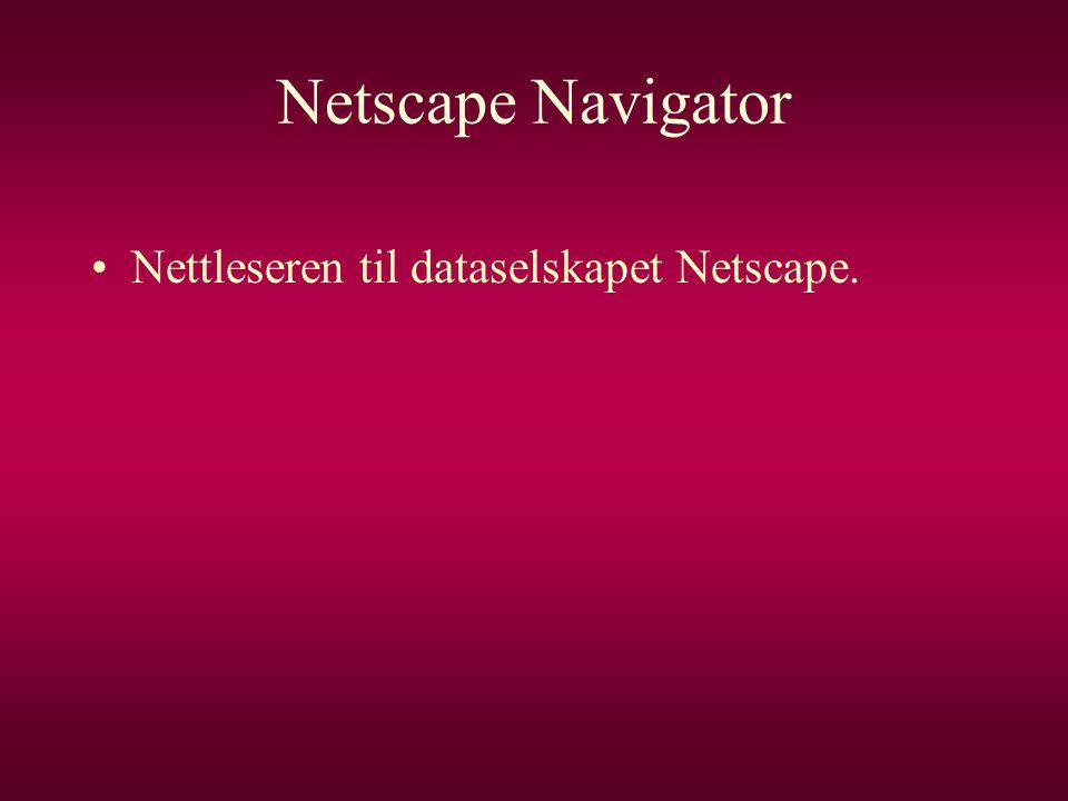 Netscape Navigator •Nettleseren til dataselskapet Netscape.