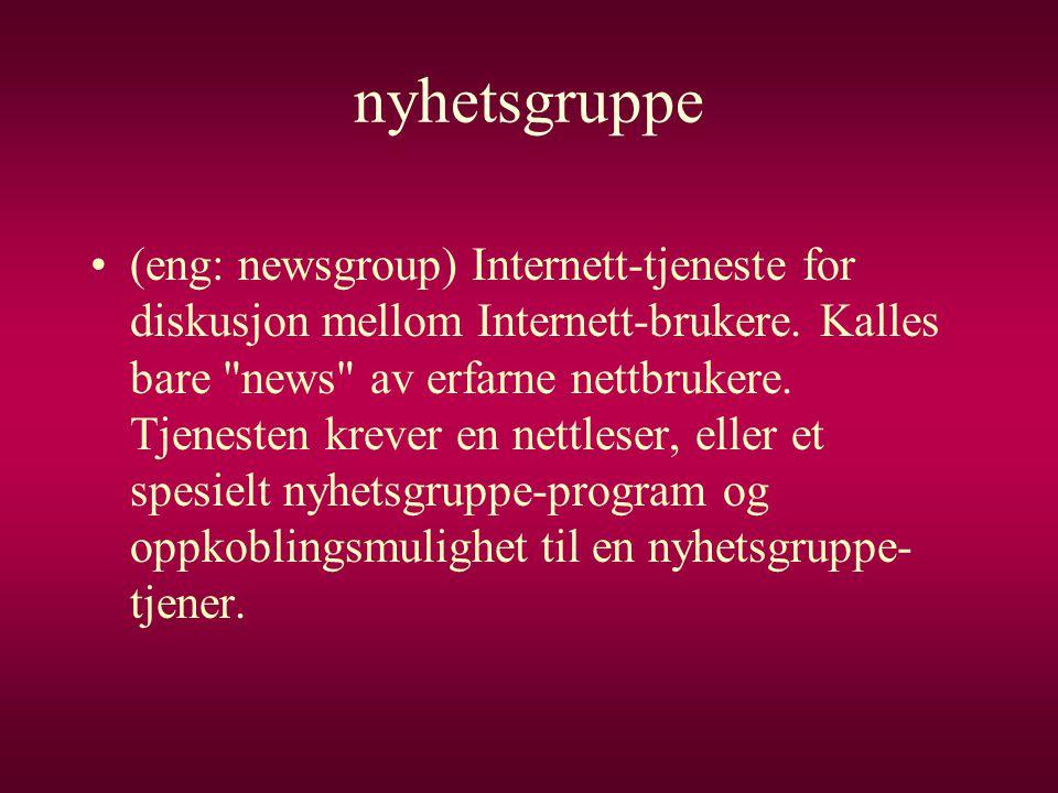 nyhetsgruppe •(eng: newsgroup) Internett-tjeneste for diskusjon mellom Internett-brukere. Kalles bare