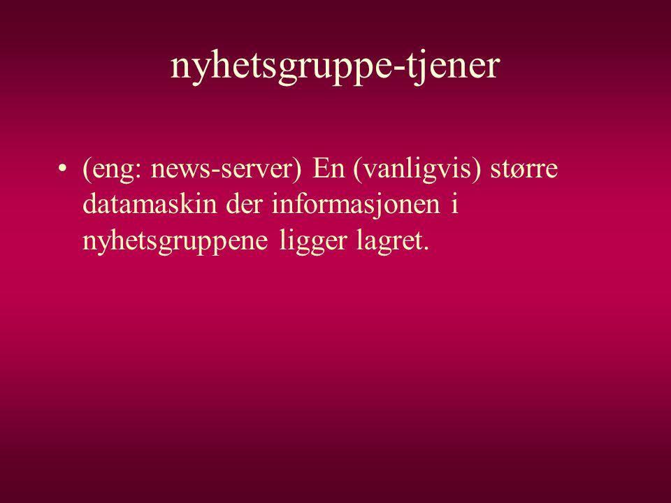 nyhetsgruppe-tjener •(eng: news-server) En (vanligvis) større datamaskin der informasjonen i nyhetsgruppene ligger lagret.