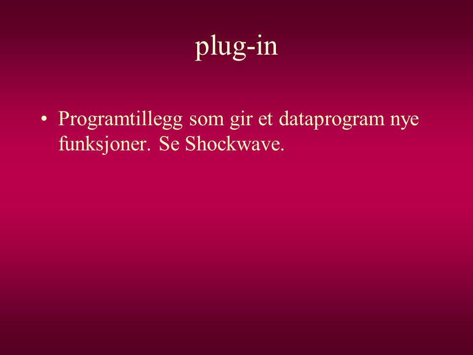 plug-in •Programtillegg som gir et dataprogram nye funksjoner. Se Shockwave.
