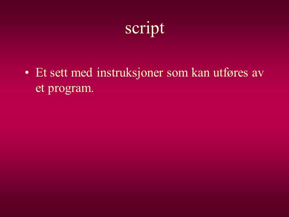 script •Et sett med instruksjoner som kan utføres av et program.
