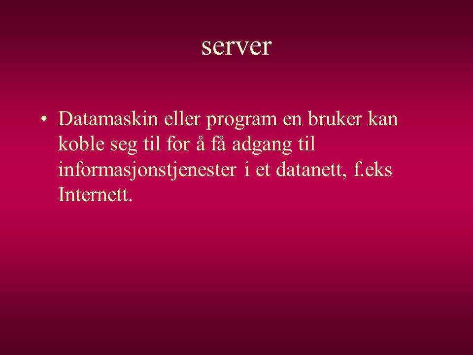 server •Datamaskin eller program en bruker kan koble seg til for å få adgang til informasjonstjenester i et datanett, f.eks Internett.