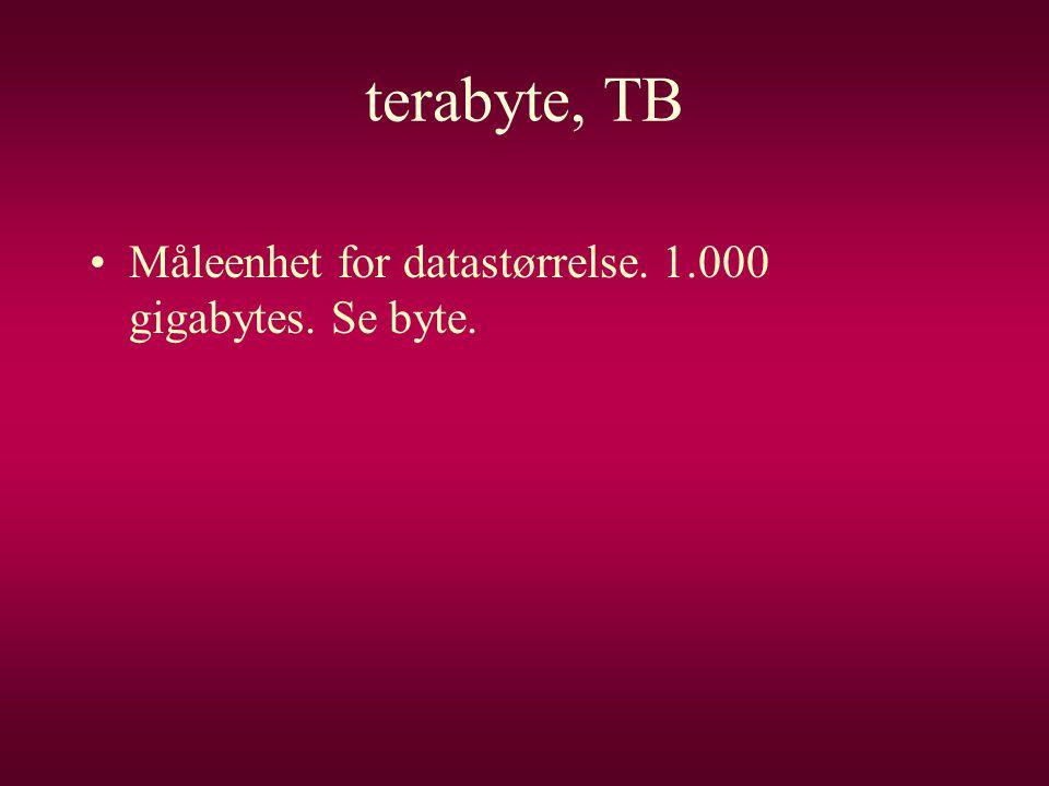 terabyte, TB •Måleenhet for datastørrelse. 1.000 gigabytes. Se byte.