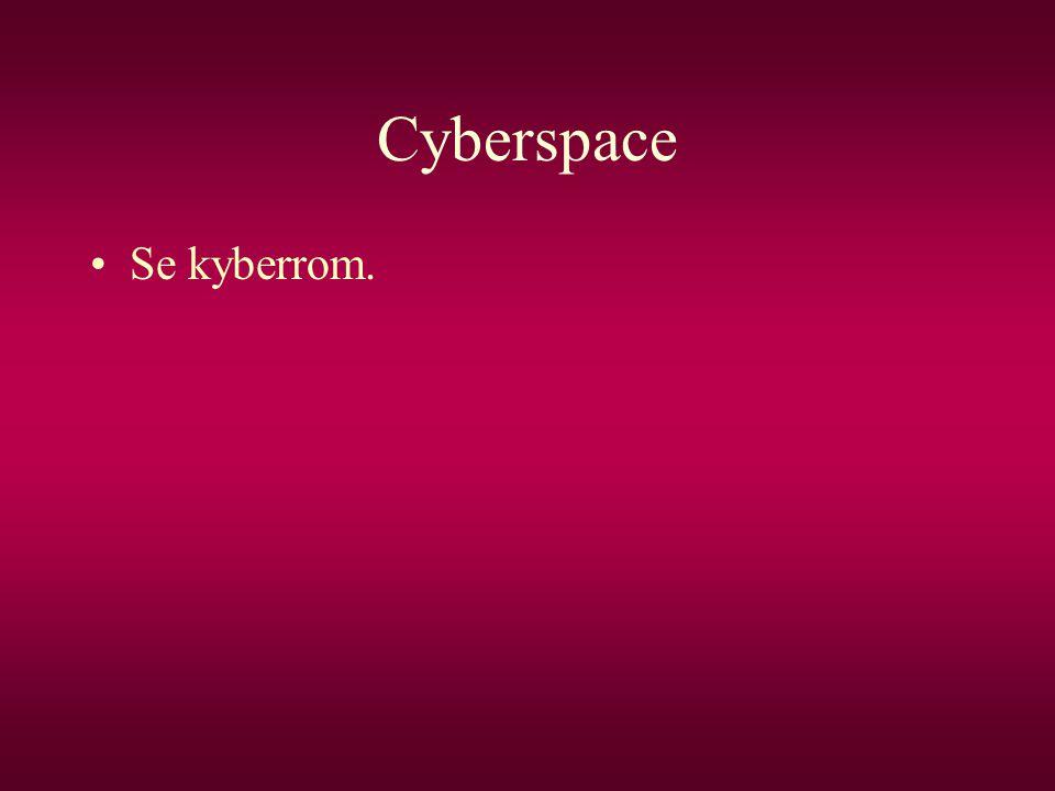 Cyberspace •Se kyberrom.