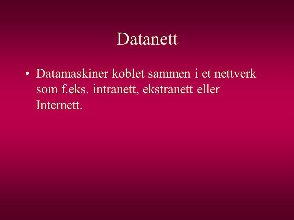 Datanett •Datamaskiner koblet sammen i et nettverk som f.eks. intranett, ekstranett eller Internett.