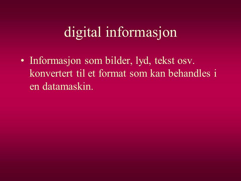 digital informasjon •Informasjon som bilder, lyd, tekst osv. konvertert til et format som kan behandles i en datamaskin.