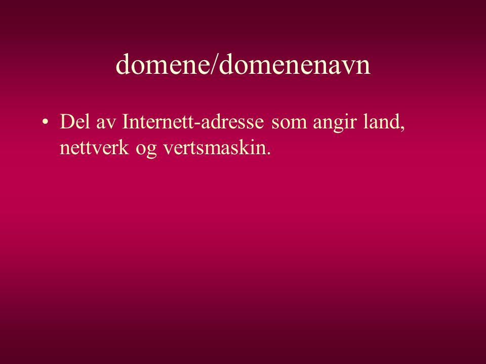 domene/domenenavn •Del av Internett-adresse som angir land, nettverk og vertsmaskin.