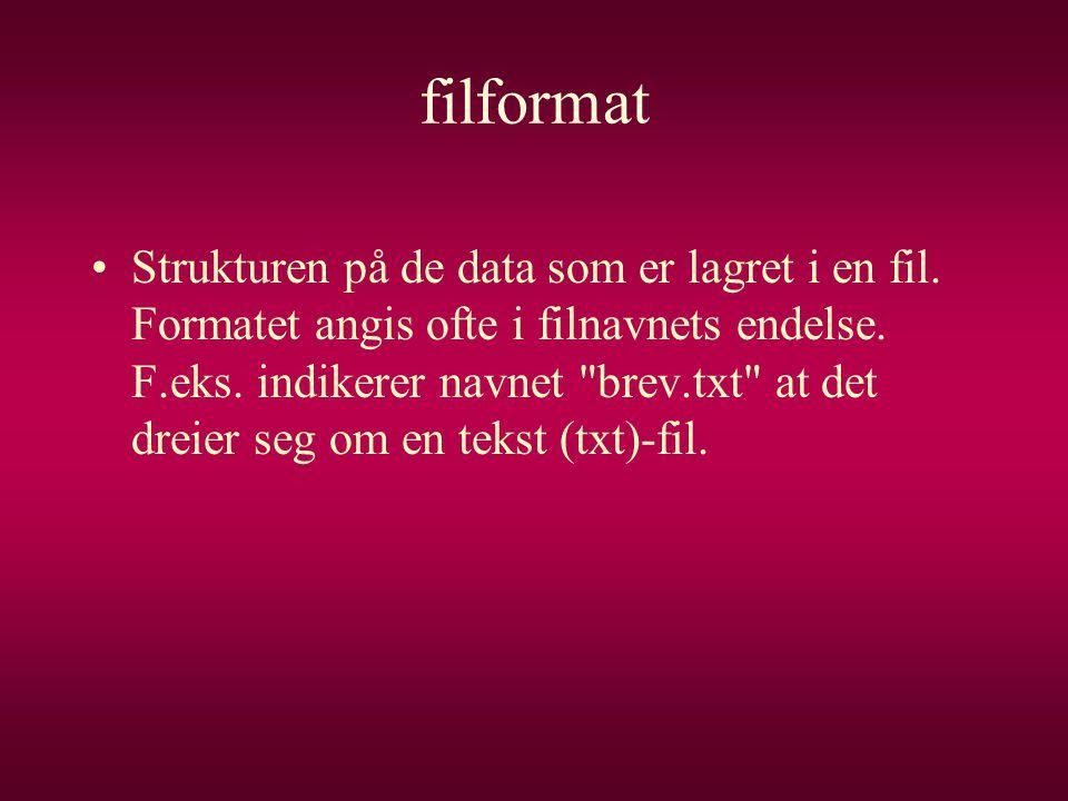 filformat •Strukturen på de data som er lagret i en fil. Formatet angis ofte i filnavnets endelse. F.eks. indikerer navnet