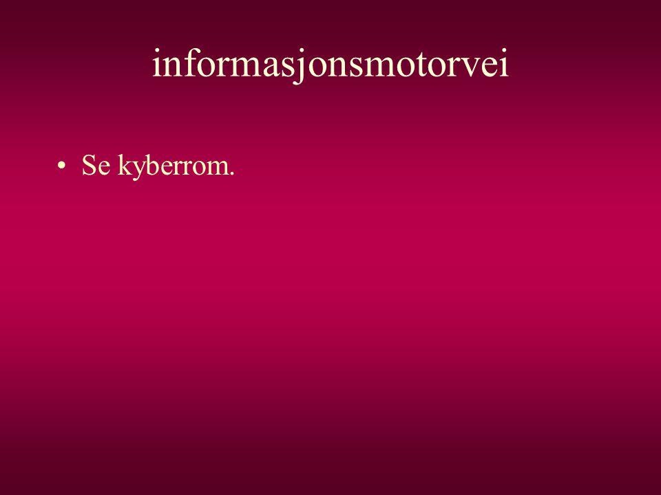 informasjonsmotorvei •Se kyberrom.