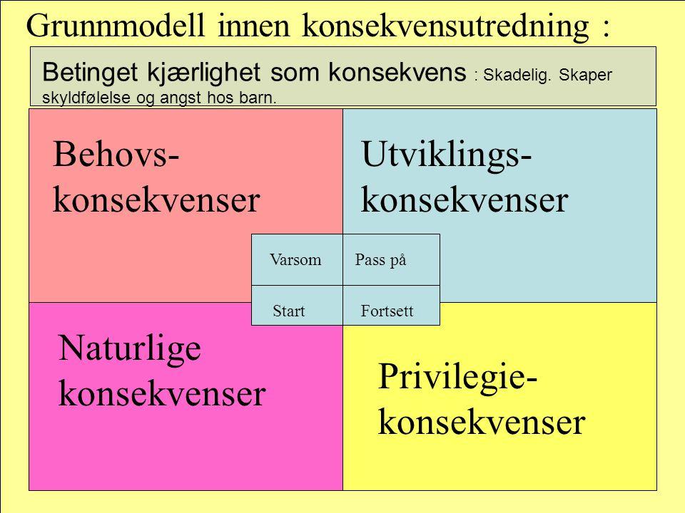 Grunnmodell innen konsekvensutredning : Behovs- konsekvenser Utviklings- konsekvenser Privilegie- konsekvenser Naturlige konsekvenser Pass påVarsom St