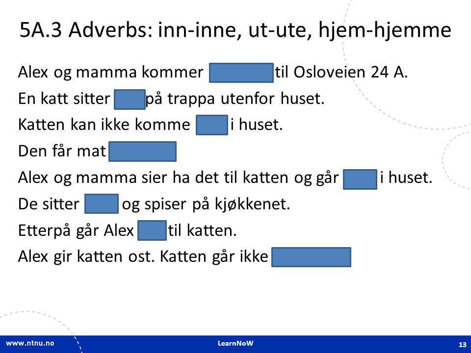 LearnNoW 5A.3 Adverbs: inn-inne, ut-ute, hjem-hjemme Alex og mamma kommer hjem til Osloveien 24 A. En katt sitter ute på trappa utenfor huset. Katten