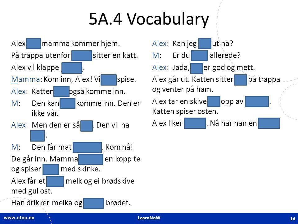 LearnNoW 5A.4 Vocabulary Alex og mamma kommer hjem. På trappa utenfor huset sitter en katt. Alex vil klappe katten. Mamma: Kom inn, Alex! Vi skal spis