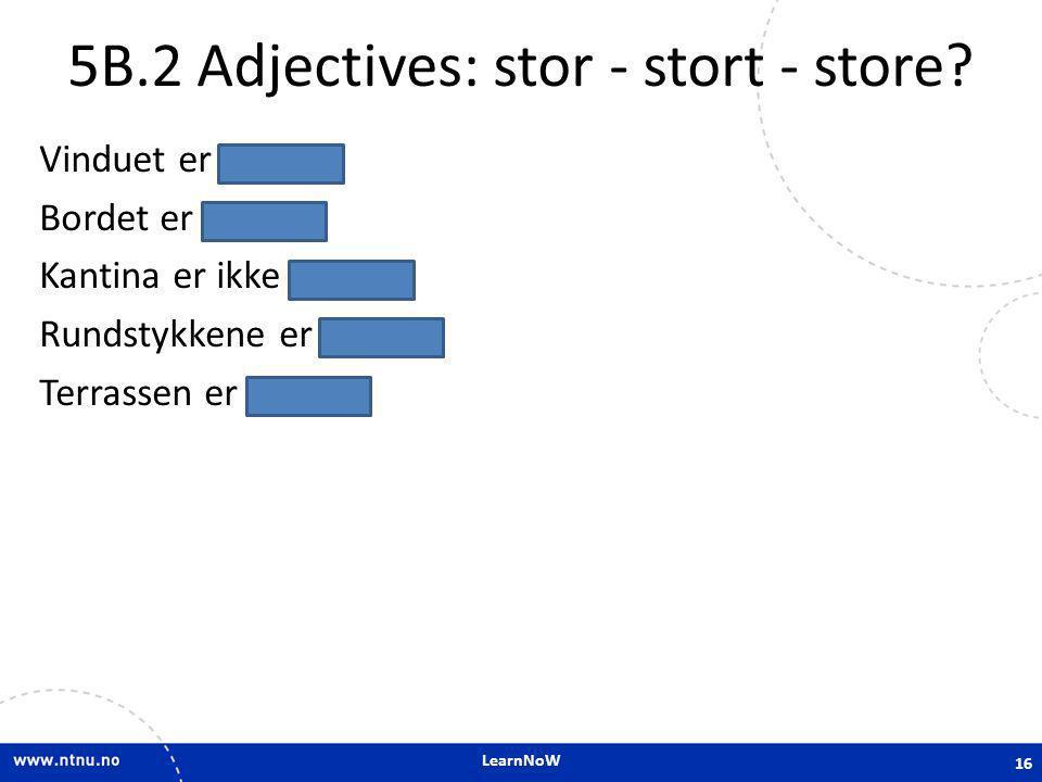 LearnNoW 5B.2 Adjectives: stor - stort - store? Vinduet er stort. Bordet er stort. Kantina er ikke stor. Rundstykkene er store. Terrassen er stor. 16