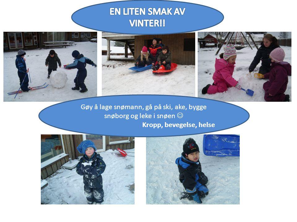 Gøy å lage snømann, gå på ski, ake, bygge snøborg og leke i snøen  Kropp, bevegelse, helse