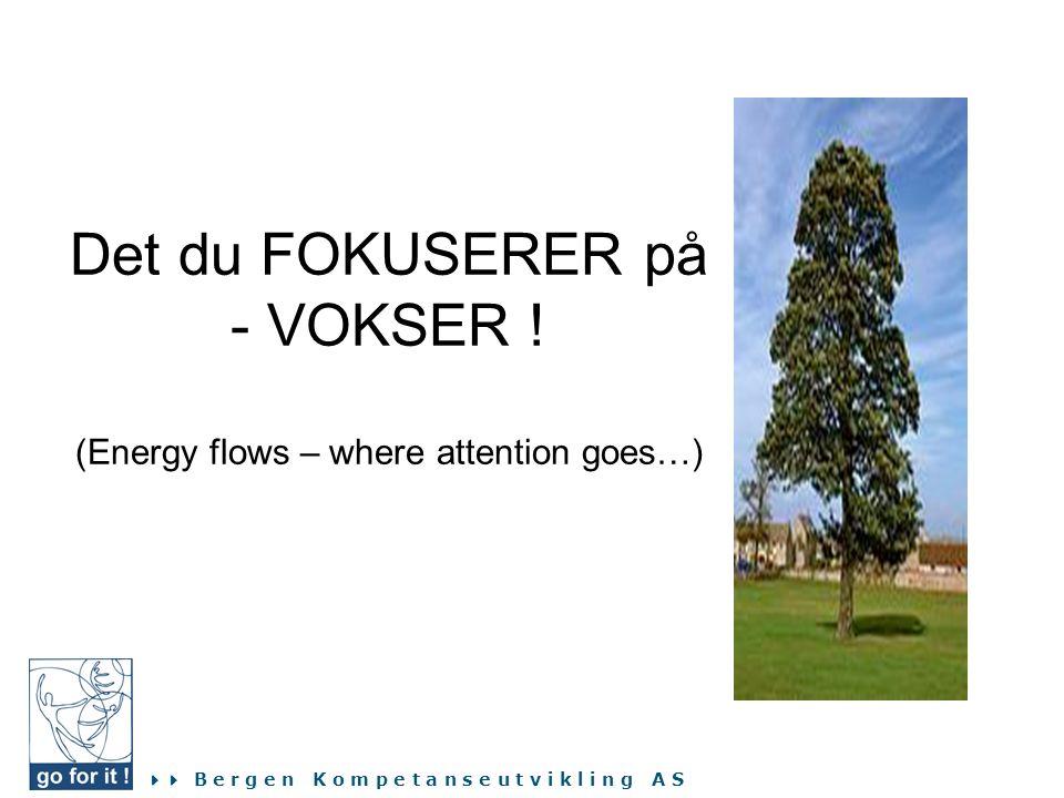  B e r g e n K o m p e t a n s e u t v i k l i n g A S Det du FOKUSERER på - VOKSER ! (Energy flows – where attention goes…)
