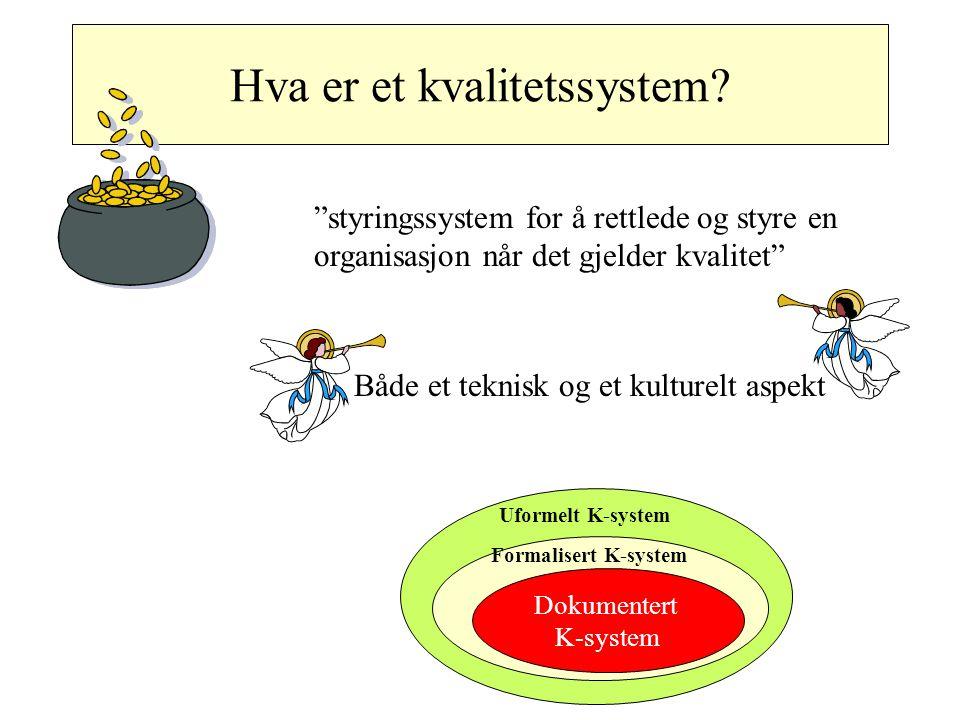 Kvalitetssystemet omfatter hele bedriften Systemer Krav, retningslinjer, standarder prosedyrer Kvalitetssystemet Menneskesyn Holdning til kvalitet Ansvar Verdier Arbeidsprosess Organisasjon Kvalitetsmål Incentiver