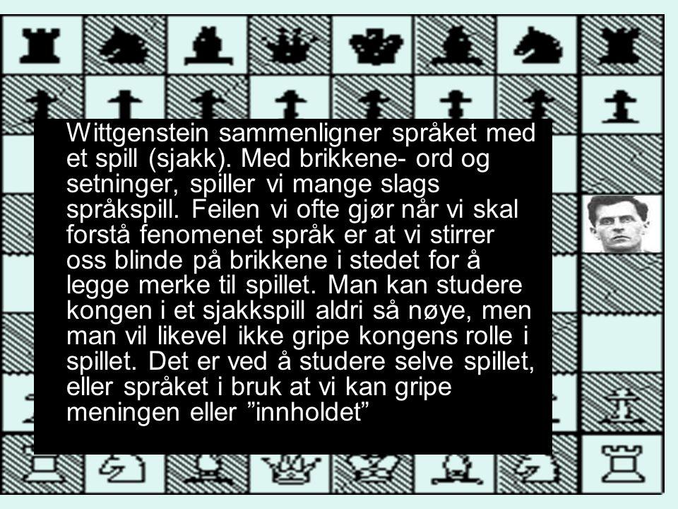 Wittgenstein sammenligner språket med et spill (sjakk). Med brikkene- ord og setninger, spiller vi mange slags språkspill. Feilen vi ofte gjør når vi