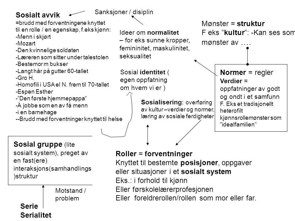 Roller = forventninger Knyttet til bestemte posisjoner, oppgaver eller situasjoner i et sosialt system Eks.: i forhold til kjønn Eller førskolelærerpr