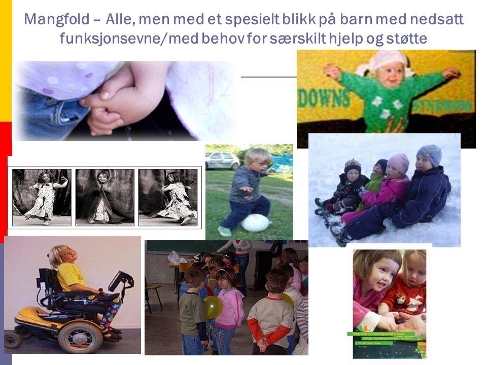 Mangfold – Alle, men med et spesielt blikk på barn med nedsatt funksjonsevne/med behov for særskilt hjelp og støtte