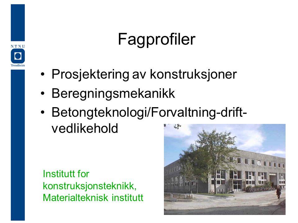 Fagprofiler •Prosjektering av konstruksjoner •Beregningsmekanikk •Betongteknologi/Forvaltning-drift- vedlikehold Institutt for konstruksjonsteknikk, Materialteknisk institutt