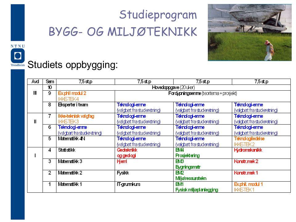 Studieprogram BYGG- OG MILJØTEKNIKK Studiets oppbygging: