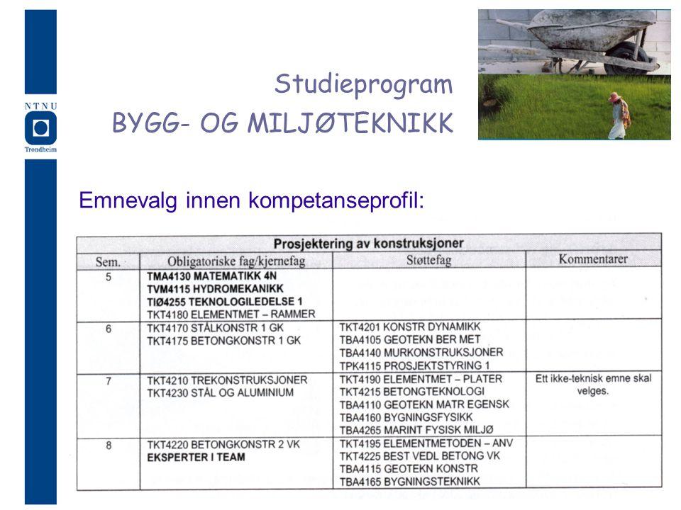 Studieprogram BYGG- OG MILJØTEKNIKK Emnevalg innen kompetanseprofil: