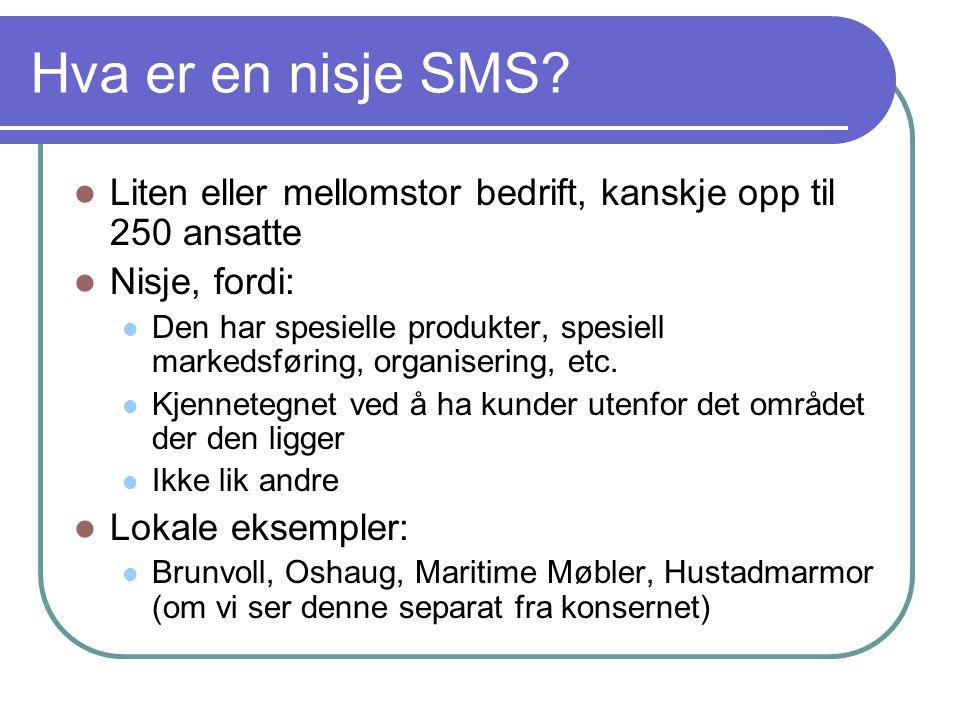 Hva er en nisje SMS?  Liten eller mellomstor bedrift, kanskje opp til 250 ansatte  Nisje, fordi:  Den har spesielle produkter, spesiell markedsføri