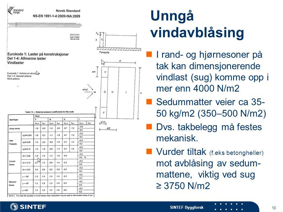 SINTEF Byggforsk Unngå vindavblåsing  I rand- og hjørnesoner på tak kan dimensjonerende vindlast (sug) komme opp i mer enn 4000 N/m2  Sedummatter ve