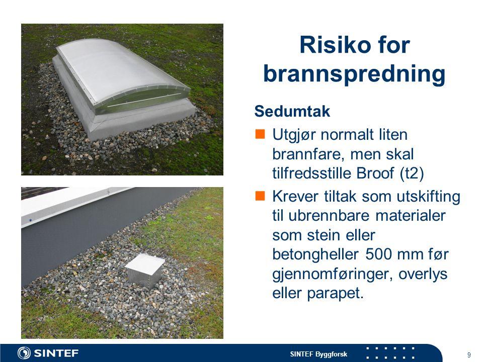 SINTEF Byggforsk Risiko for brannspredning Sedumtak  Utgjør normalt liten brannfare, men skal tilfredsstille Broof (t2)  Krever tiltak som utskiftin