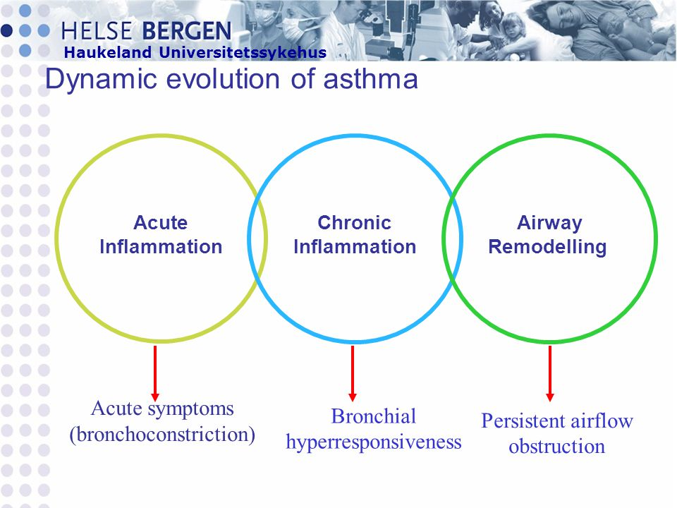 Haukeland Universitetssykehus Dynamic evolution of asthma Acute Inflammation Airway Remodelling Chronic Inflammation Acute symptoms (bronchoconstricti