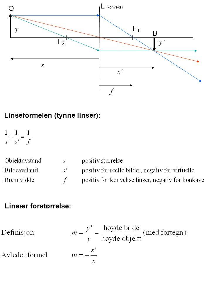 Lineær forstørrelse: Linseformelen (tynne linser): F1F1 F2F2 O B L (konveks) s s' f y y'