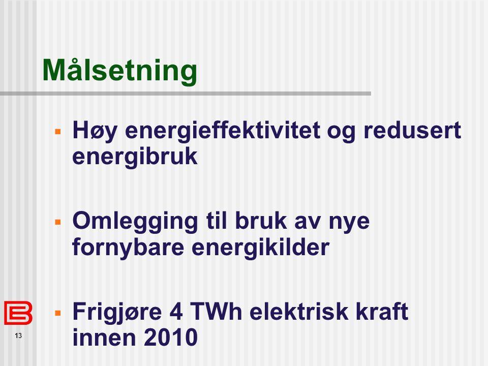13 Målsetning  Høy energieffektivitet og redusert energibruk  Omlegging til bruk av nye fornybare energikilder  Frigjøre 4 TWh elektrisk kraft innen 2010