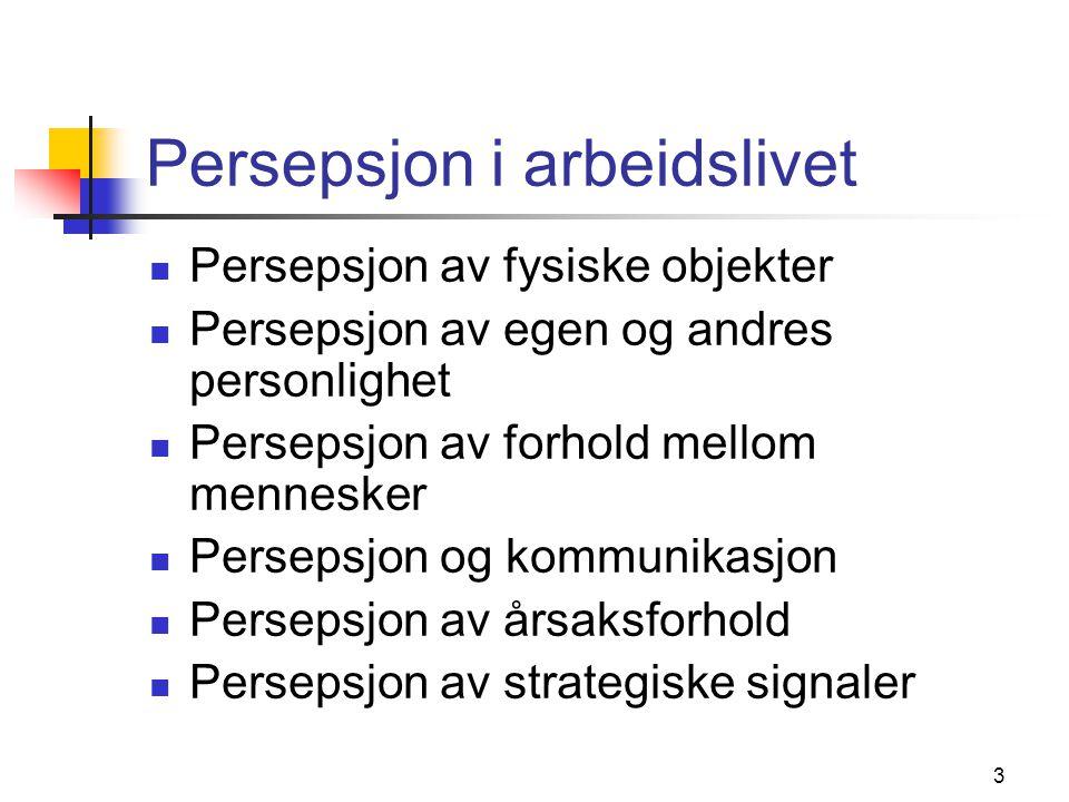 3 Persepsjon i arbeidslivet  Persepsjon av fysiske objekter  Persepsjon av egen og andres personlighet  Persepsjon av forhold mellom mennesker  Pe