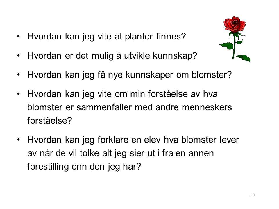 17 •Hvordan kan jeg vite at planter finnes? •Hvordan er det mulig å utvikle kunnskap? •Hvordan kan jeg få nye kunnskaper om blomster? •Hvordan kan jeg