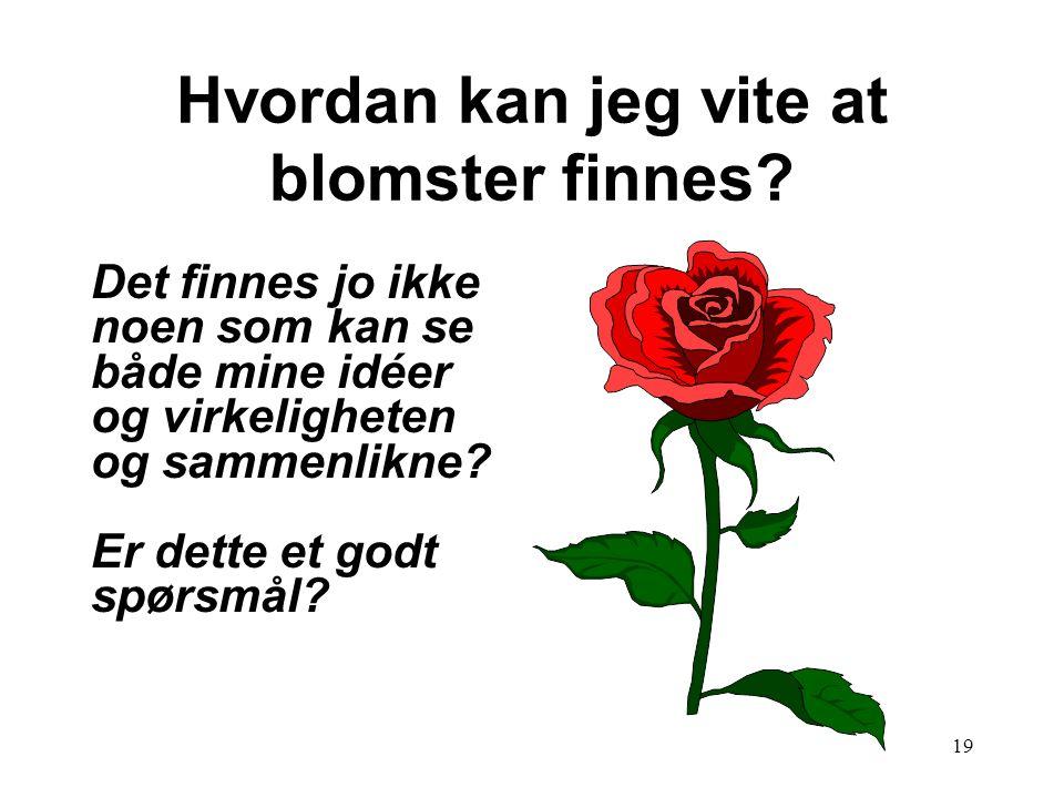 19 Hvordan kan jeg vite at blomster finnes? Det finnes jo ikke noen som kan se både mine idéer og virkeligheten og sammenlikne? Er dette et godt spørs