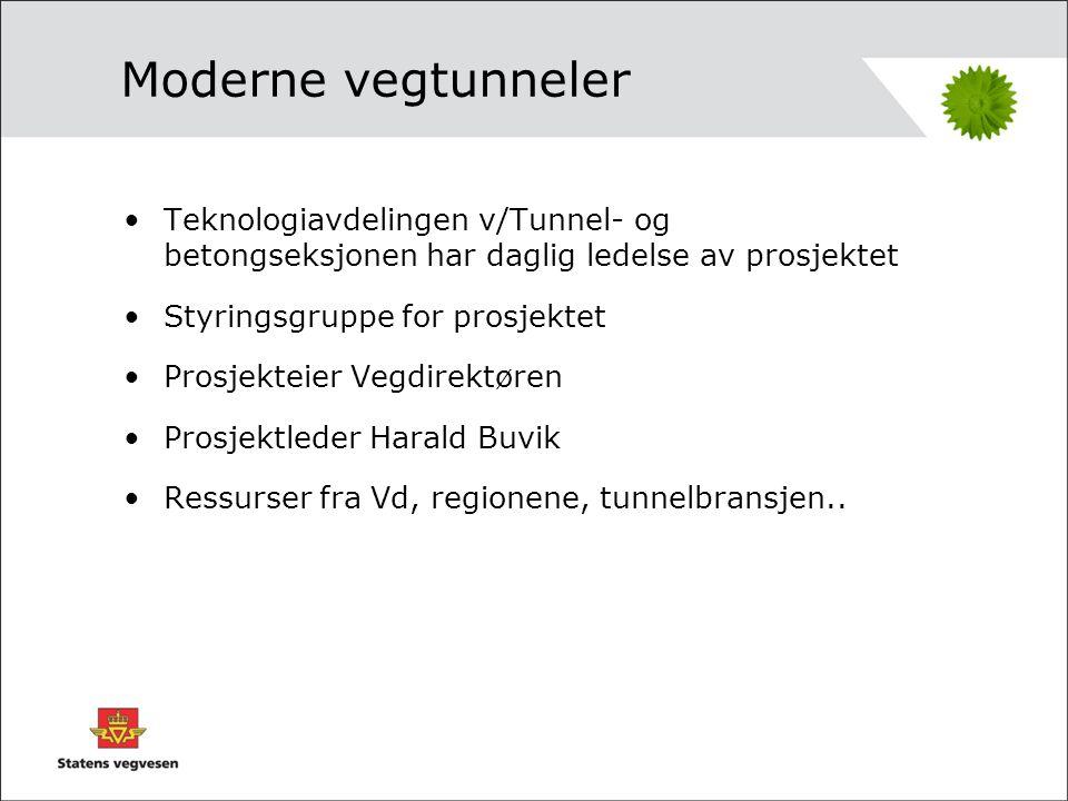 Styringsgruppe •Lars Aksnes (leder) •Ole Chr.