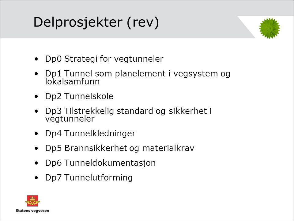 Tunnelstrategi Målsetningen er at man gjennom økt kompetanse og tverrfaglig helhetstenking i forhold til planlegging, bygging og drift/vedlikehold av vegtunneler oppnår størst mulig grad av forutsigbarhet i forhold til kvalitet, sikkerhet og forvalting av vegtunneler.