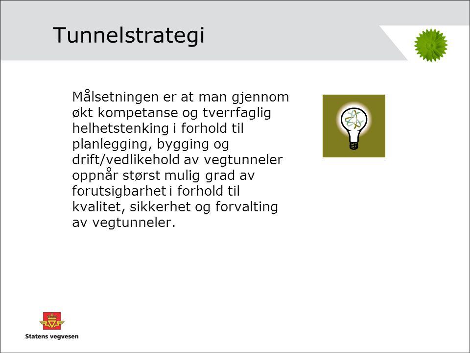 Hva skal en tunnelstrategi omfatte.